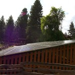 006Johnson Solar