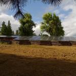 008Johnson Solar